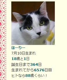 ほーりーうちの子記念翌日(^_^;)