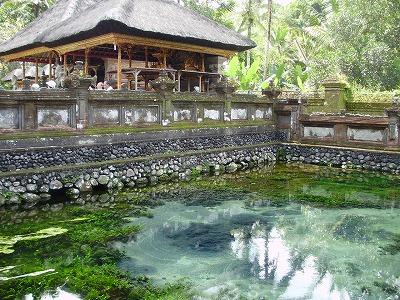 聖なる泉。