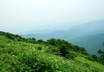 伊吹山の写真1
