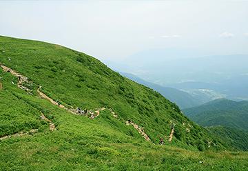伊吹山を登る人々