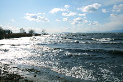 冬の琵琶湖2