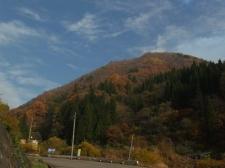 kouyou20111114