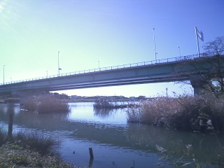 新中川橋2