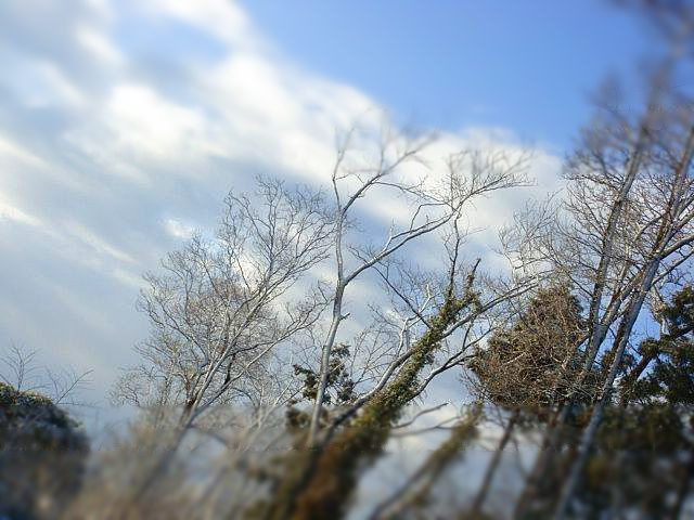 2010.2月 ななめ雲.jpg