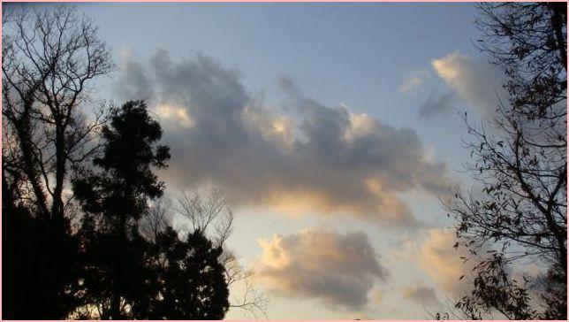 2011.12月 001.jpg