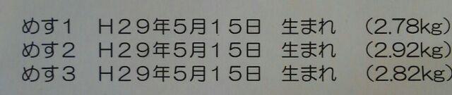 1507123988296.jpg