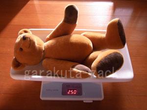ベアの体重をはかっている画像