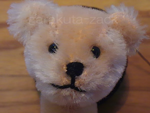 ベアの顔の写真