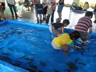 090705岩魚子供