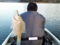 ワカサギ釣り風景2006年12月11日