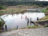 大根池の池干し8