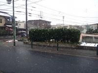 2012年名古屋初雪1
