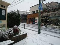 名古屋積雪1