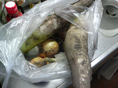 野菜たくさん