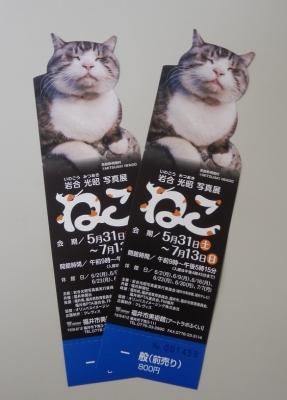 猫写真展前売り券