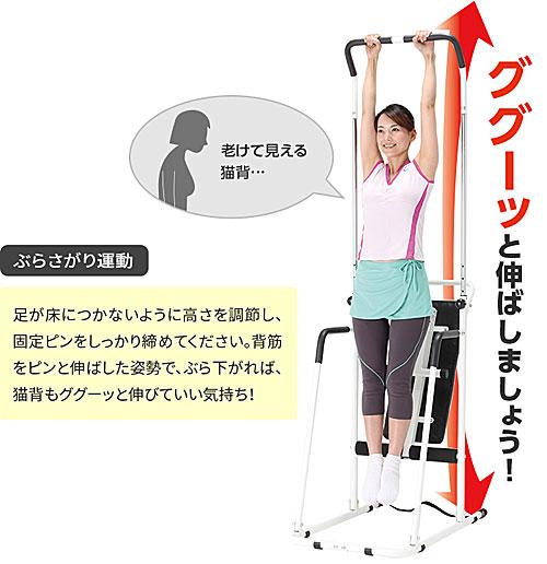 ぶら下がり運動:NEWぶらさがり健康器 筋トレベンチ付き