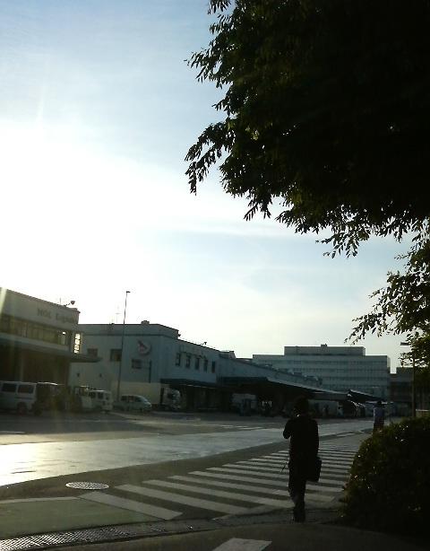 東京税関前