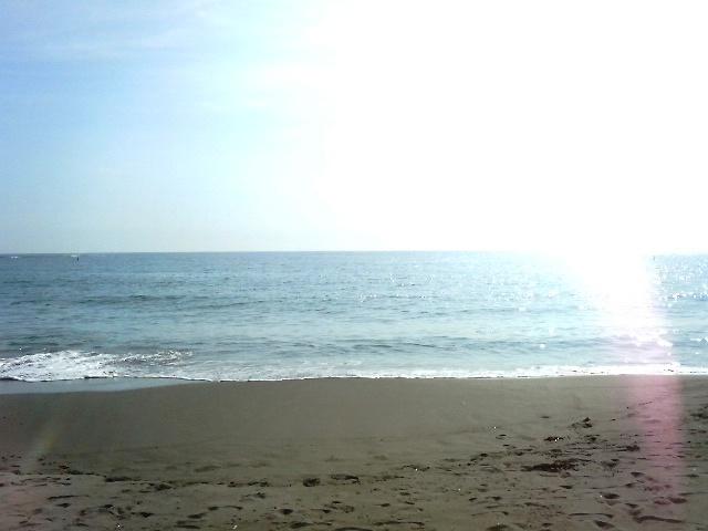 キラキラな海