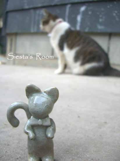 猫とツーショット