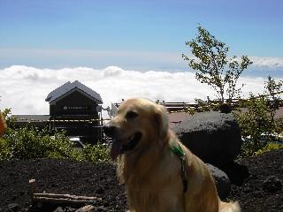ラルフと雲海