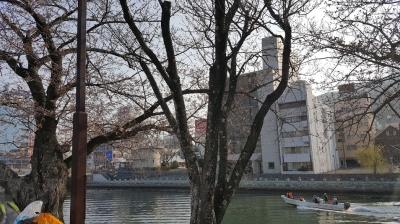 走った後、ランナーズオアシス 桜と新町川