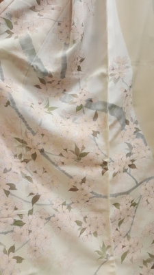 桜模様の着物2