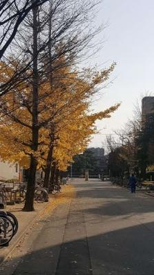徳島大学の構内