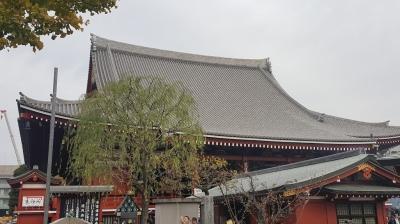 紅葉の浅草寺