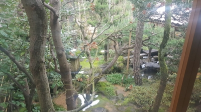 武家屋敷野村家の茶室から見た庭