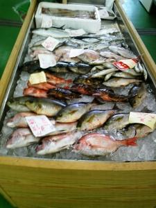 水産会館鮮魚