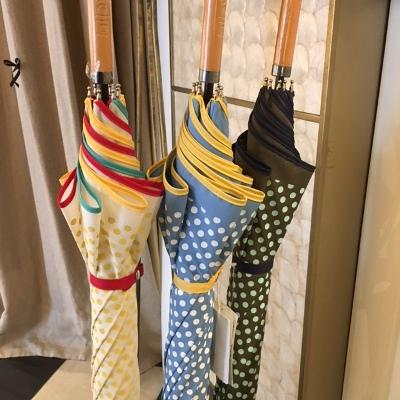 オレンジ雨傘 (5).JPG