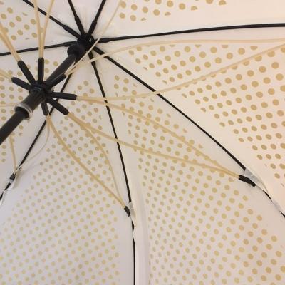 オレンジ雨傘 (6).JPG