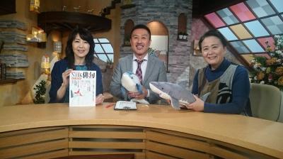 NHK俳句』~兼題「鮫・海豚」は...