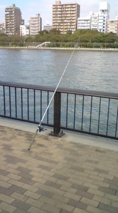 隅田川のハゼ釣り