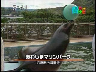 あわしまTV