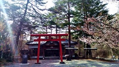富士山 船津胎内樹型