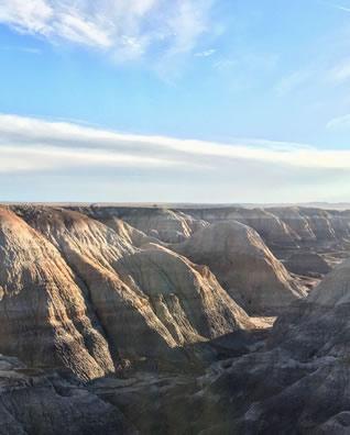 アリゾナ州 ペトリファイドフォレスト ミーアクリスタル