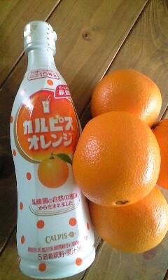 オレンジカルピス