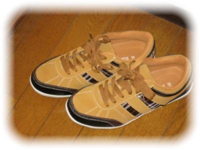 三男坊の靴