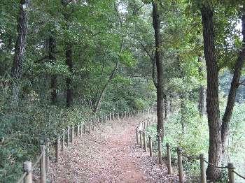 自然観察路