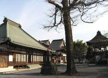 宗禅寺の境内