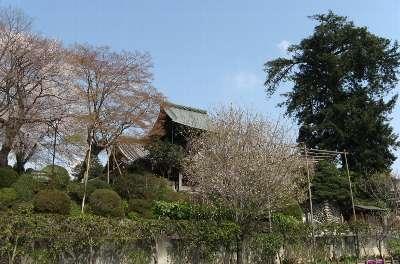 宗泉寺 1(2007)