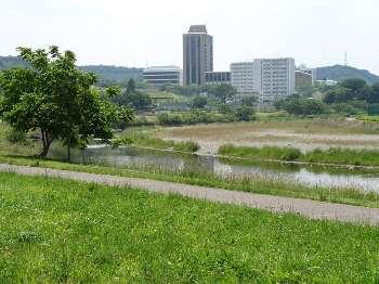 入間川(飯能市)