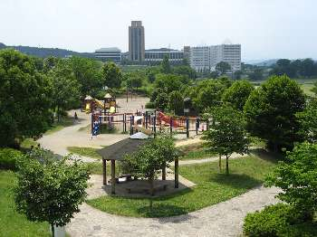 ちびっ子広場(入間川)