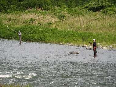 釣り人 (多摩川)