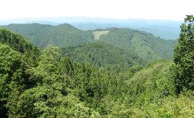 コースからの景色(高水山)