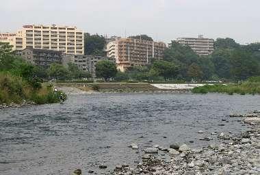 多摩川(友田)2