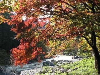 御岳渓谷 3