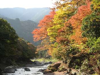 御岳渓谷 6