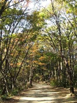 永山公園 2